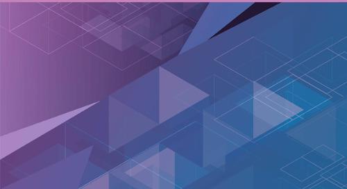 A Blueprint for Securing the Entire Application Portfolio