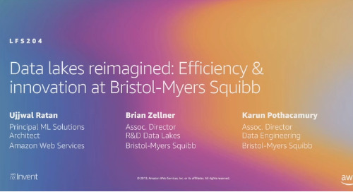 Video: Data lakes reimagined: Efficiency & innovation at Bristol-Myers Squibb