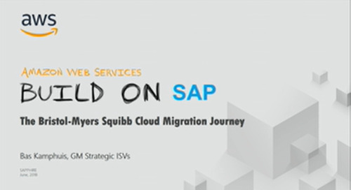 Webinar: Reduce costs and achieve stellar business outcomes the BMS way