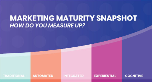 Marketing Maturity Snapshot: How Do You Measure Up?