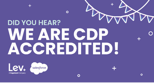 Lev Is Officially a Salesforce CDP Consulting Partner