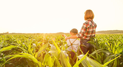 Farms Safety Legislation - OH&S Questions & Answers