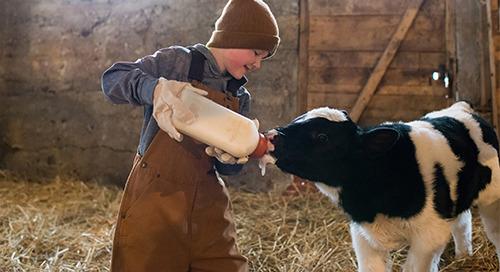 Farm Safety & Children