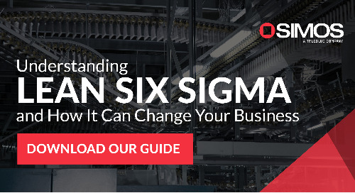 What is Lean Six Sigma eBook