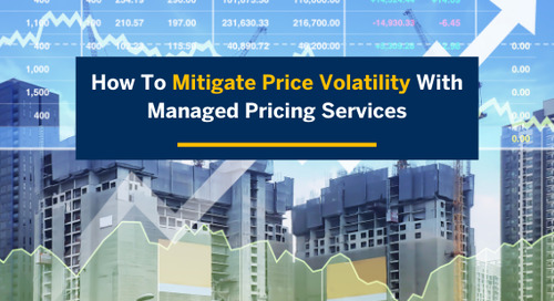 How to Mitigate Price Volatility with Managed Pricing Services