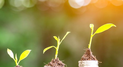 Cash Management: Meeting Your Non-Profit Organization's Needs in a Changing Environment