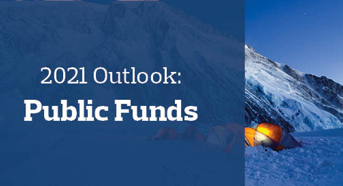 2021 Outlook: Public Funds