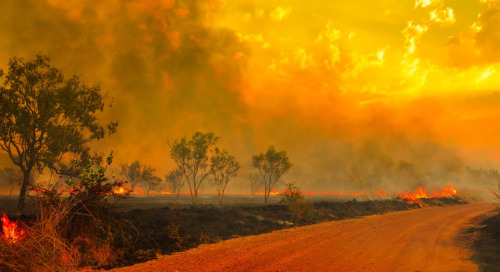 Wildfire Risk Roundtable Discussion