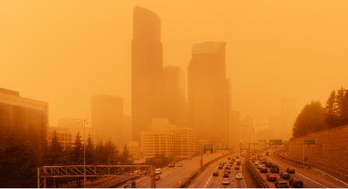 Intervention d'urgence: Saison des feux de forêt 2021
