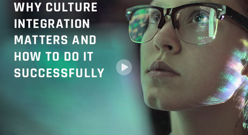 Why Does Culture Integration Matter and How to do it Successfully