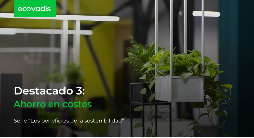 Destacado 3: Ahorro en costes