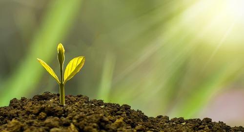 Was ist nachhaltige Beschaffung?