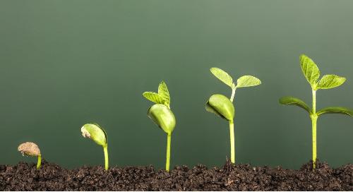 Einstieg in die nachhaltige Beschaffung