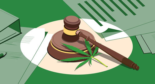Survey: Assessing Legal Risk When Financing the Cannabis Industry