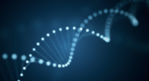 Mapping the Device Flow Genome