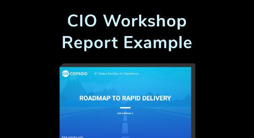 CIO Workshop Report Example
