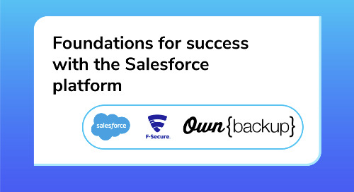 Foundation for Success with the Salesforce Platform