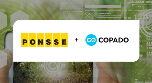 How Copado Helps Automate QA for the King of the Forest