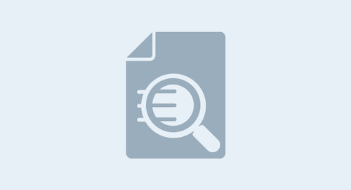 Prism Privilege Identification in HSR Second Request Case Study