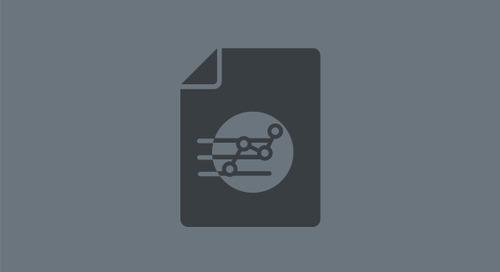 Rapid PII Identification Data Sheet