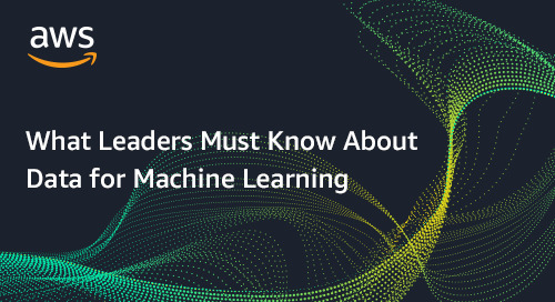 What Leaders Must Know About Data for Machine Learning