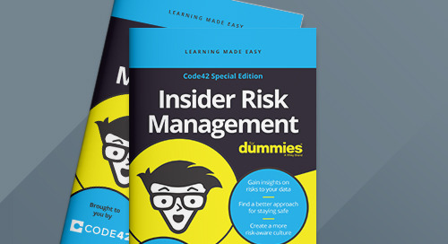 Insider Risk Management for Dummies