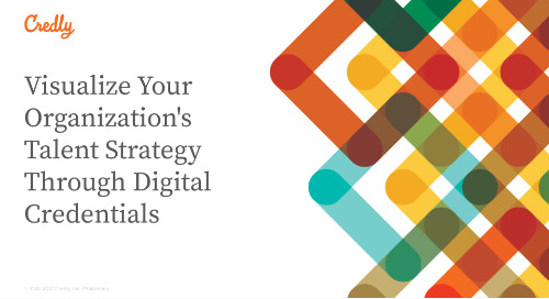 Visualize Your Organization's Talent Strategy Through Digital Credentials