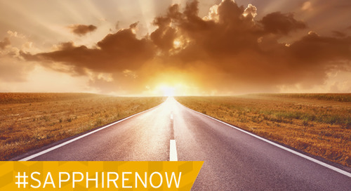 Next Exit, SAPPHIRE NOW