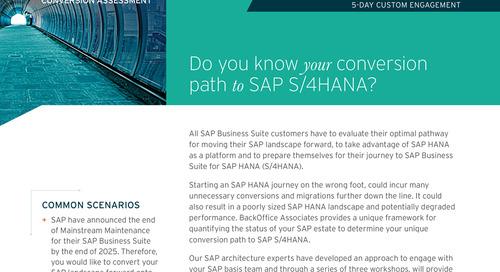 SAP S/4HANA Conversion Assessment