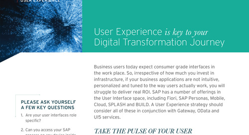 SAP User Experience