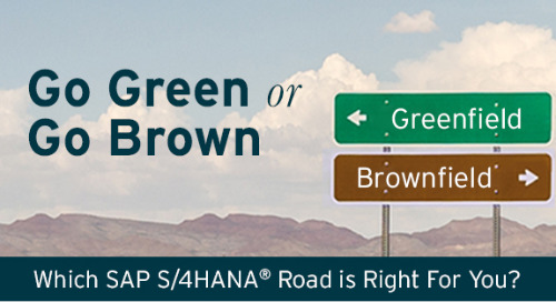 Go Green or Go Brown: Which S/4HANA Road is Right for You?