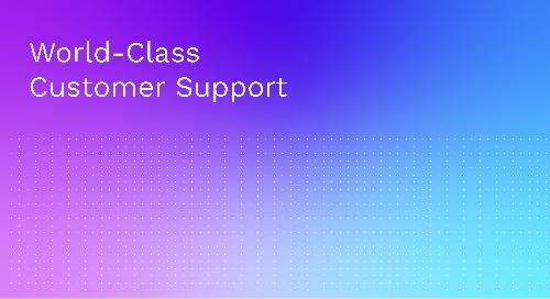 World-Class Customer Support