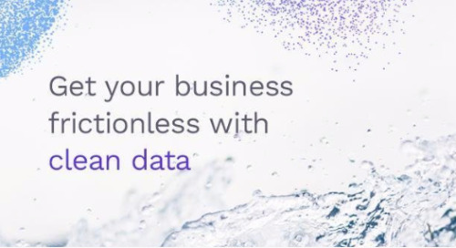 Get Your Business Frictionless with Clean Data