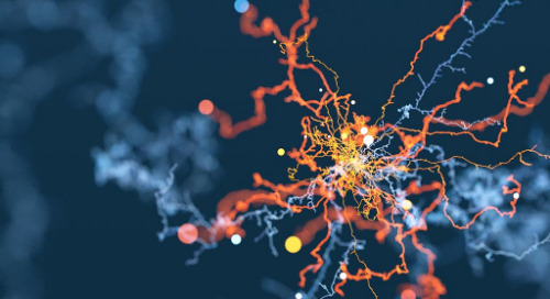Digitalisation: Big bang or incremental?