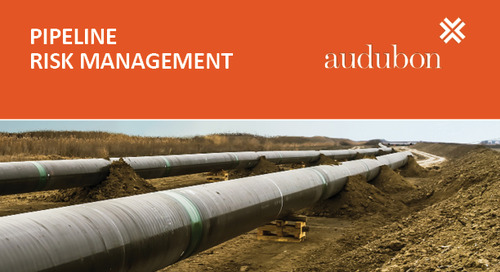 Pipeline Risk Management