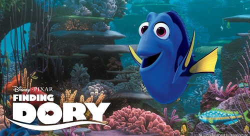 Does Your Biz Have What it Takes to Find Dory? [Quiz]
