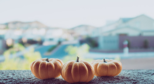 Last Minute Halloween Social Media Tips for Small Businesses