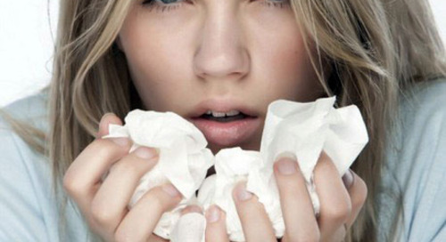 7 Makanan Wajib Konsumsi Untuk Mencegah Flu