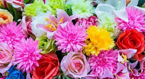 6 Manfaat Cantik dan Sehat dari Bunga Favorit Anda