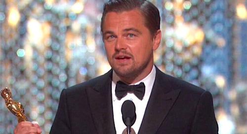 Yang Jenggotan, Yang Bersinar di Oscar 2016