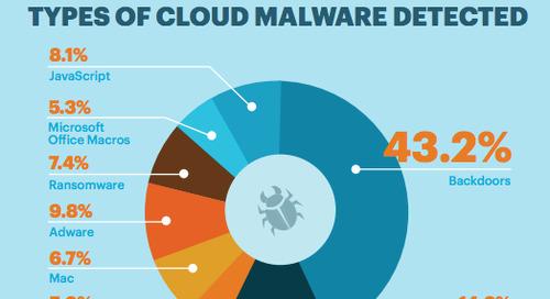 Netskope Cloud Report - EMEA Edition January 2017 [Infographic]