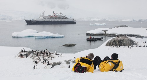 When to Visit Antarctica: A Traveler's Guide to the 7th Continent