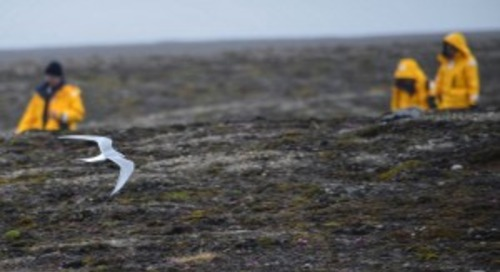 Part 2: Journey to the Arctic with Janet & John Tangney