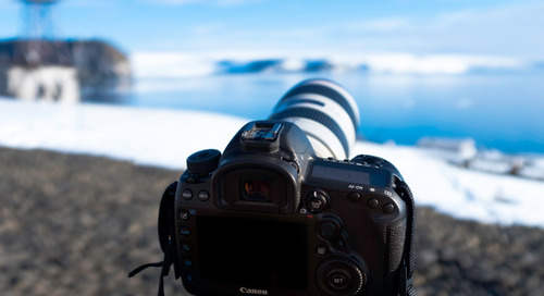 Antarctica Expedition: Photography Tips