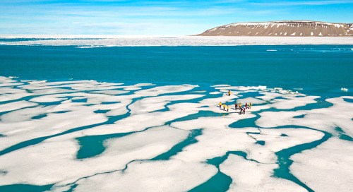 Traveler's Guide to Arctic Watch Wilderness Lodge: What You'll See & Do in the Canadian High Arctic