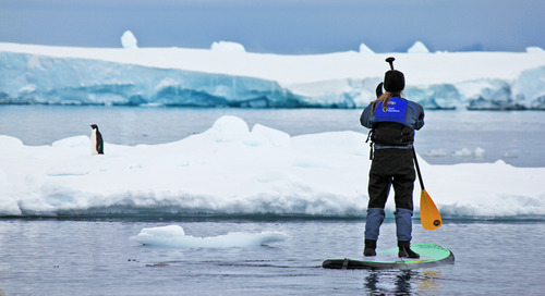 Stand-Up Paddleboard Tips for Adventurous Antarctic Visitors