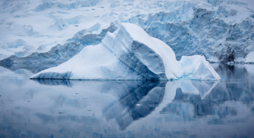The Polar Explorer's Guide to Icebergs: Bergy Bits, Growlers & More