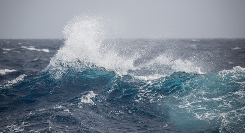 Crossing the Drake Passage: How to Prepare for the Drake Shake