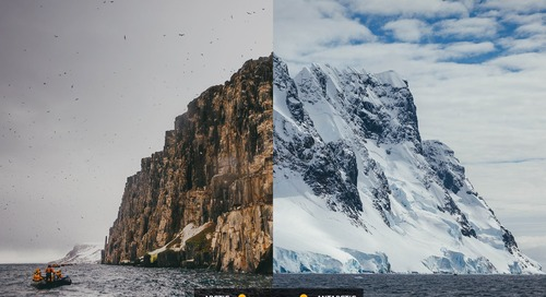 How to choose between the Arctic and Antarctic for your Polar Voyage