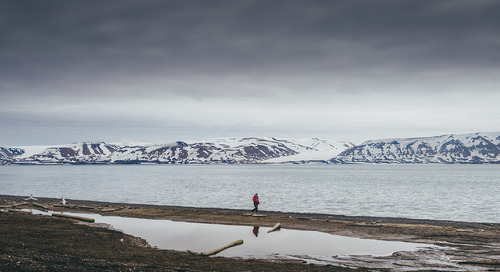 Escape the Crowds in the Arctic: Remote Spitsbergen